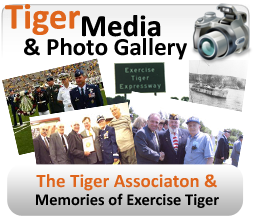 Tiger Photo Gallery